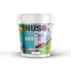 นูโซ่-สีภายนอกภายใน